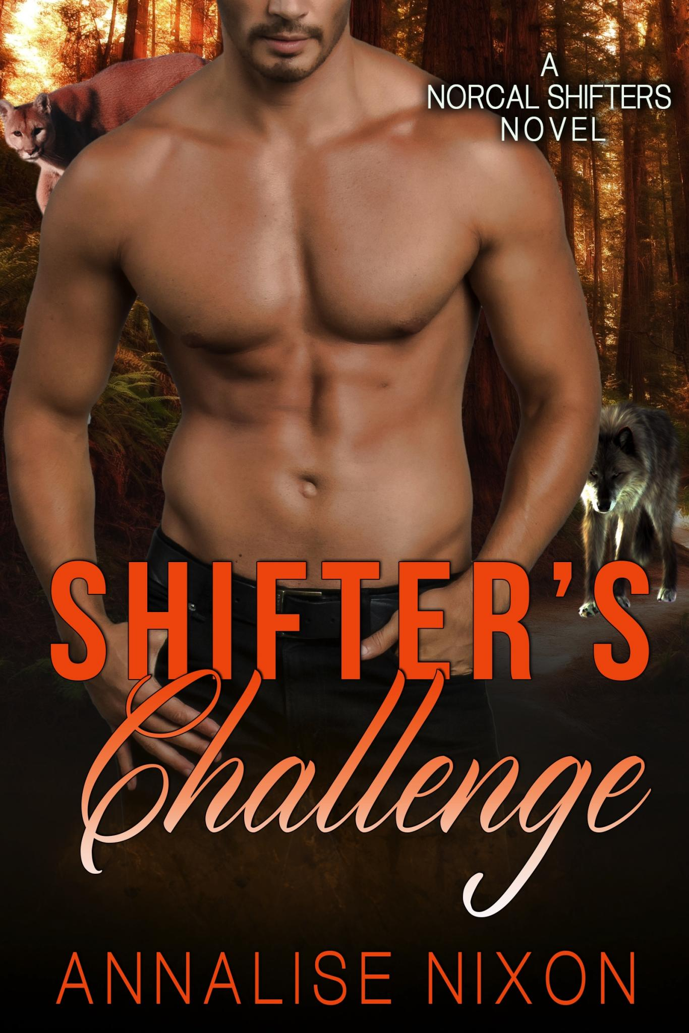 Shifters-Challenge-Kindle